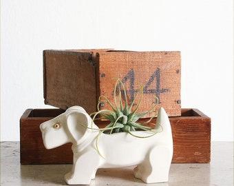 Vintage Ceramic Scottie Dog Planter / Retro Gardening