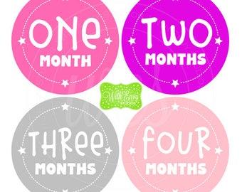 Star Baby Monthly Stickers - Baby Bodysuit Stickers - Monthly Baby Stickers - Girl Monthly Stickers - Pink, Purple, Gray Stickers - 048