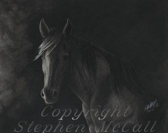 "Giclee fine art print of original ""Night Watch"" charcoal drawing, horse, horse art, equine art, black horse, black stallion, charcoal"