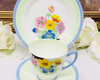 Shelley hand painted teacup and saucer with dessert plate.