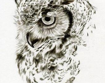 Owl Drawing Advanced Cross Stitch Pattern PDF