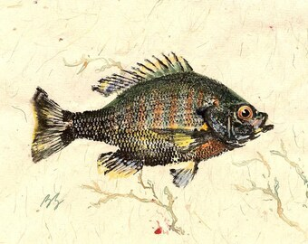 GYOTAKU fish Rubbing Sunfish in the Pond 8.5 X 11 quality Art Print Bluegill Cottage Decor by artist Barry Singer
