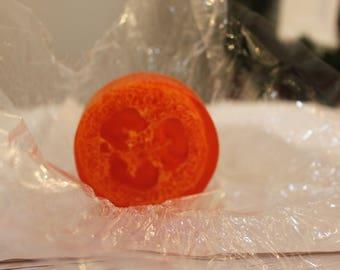 Cranberry Orange - Loofah Soap