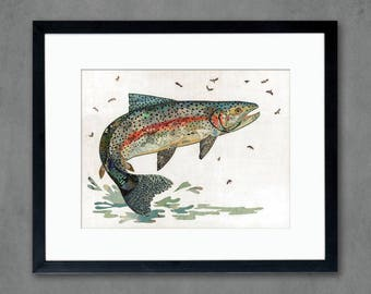 Rainbow Trout II Art Print on Paper