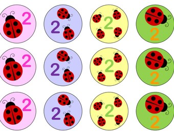 Ladybird Cupcake Toppers, Edible Cupcake Toppers, Edible Prints, Add Any Age, Ladybird Toppers, Custom Toppers, Wafer Toppers