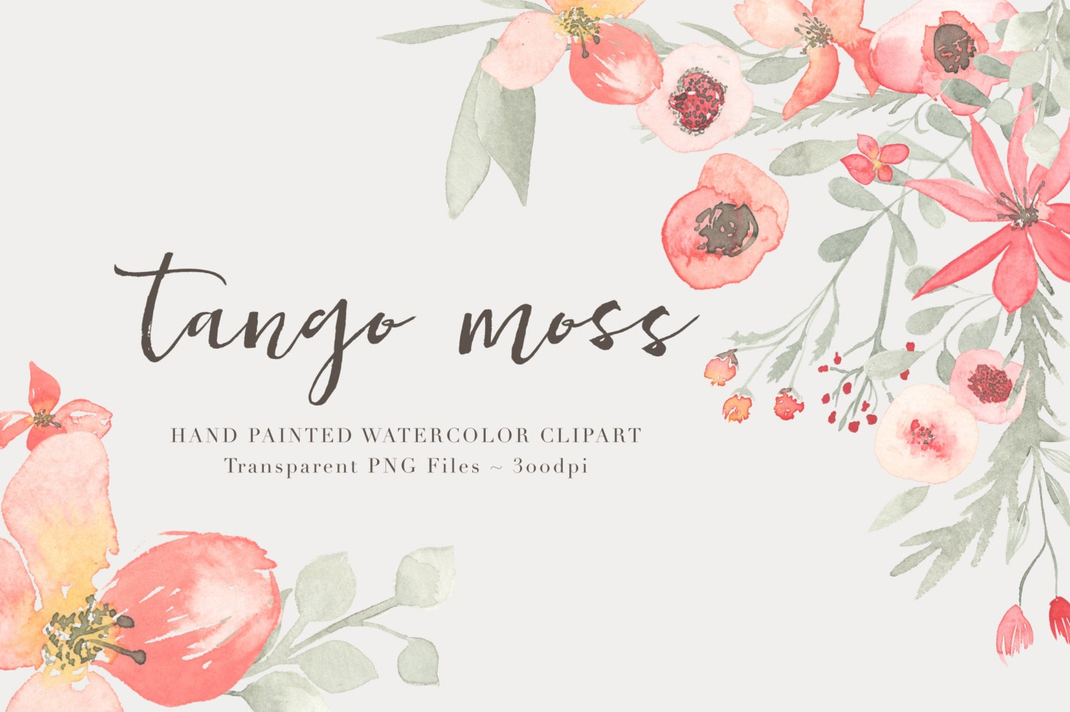 Tango watercolor flowers clipart files high res transparent - High resolution watercolor flowers ...