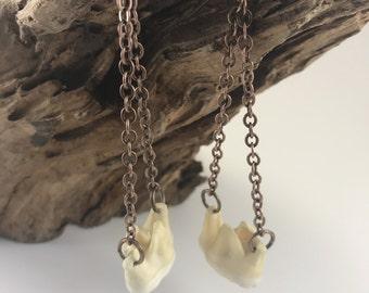 Bear Tooth Earrings