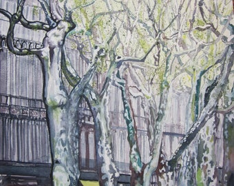 Spring scene of a boulevard with trees in Beziers, France