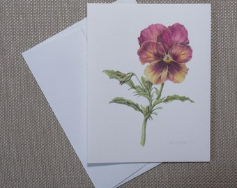 """Pansy, blank botanical note cards, package of 6, all one design, 5 1/2"""" x 4 1/4"""""""