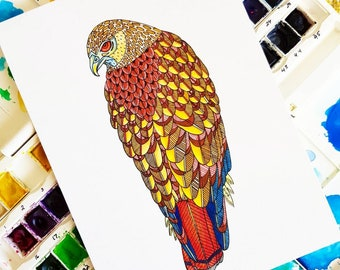 Original Red-Tailed Hawk Watercolour Illustration