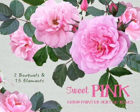 Digital Clipart- Watercolor Flower Clipart, peonies Clip art, Floral Bouquet Clipart, wedding flowers clip art- Sweet Pink