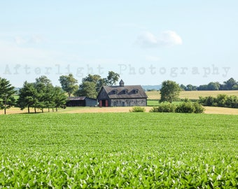 Barn Photography, Country Photograph, Rustic Home Decor, Kentucky, Landscape Photography, Kentucky Art