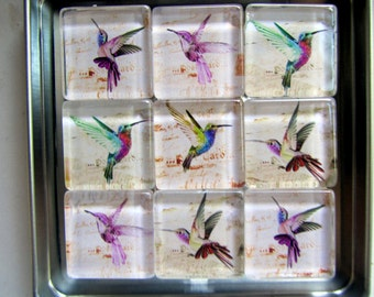 Hummingbird Refrigerator Magnets, Set of 9 Hummingbird Fridge Magnets in Storage Tin