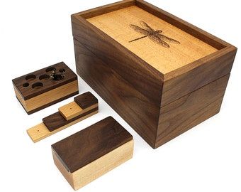Insect Pinning Kit (Dragonfly)