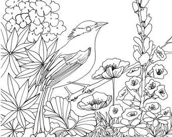 Bird in Chelsea Garden - Colouring Page