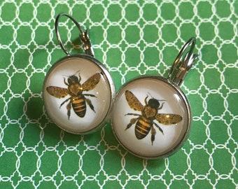 Yellowjacket bee glass cabochon earrings - 16mm