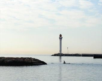 Port de Cannes | 2007