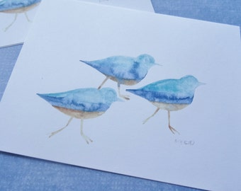 Sandpiper Cards, Beach Bird Cards, Watercolor Bird Cards, Bird Watercolor Cards, Shorebird Cards, Beach Themed Cards, Set of 6