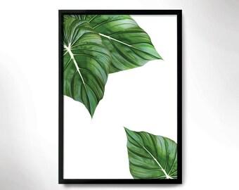 Beautiful Botanical Print, green leaves poster, leaves photo, Botanical poster,tropical mood
