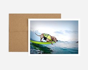 Surf Dog Birthday Greeting Card