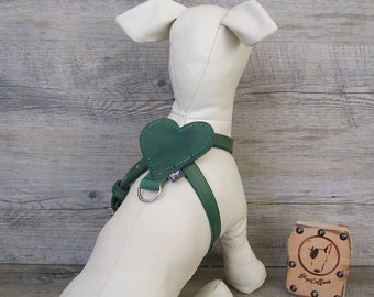 Green Dog Harness, Full Adjustable Leather Dog Harness, Heart Shape Comfort Dog Harness, Dog Accessories, Colorful Dog Harness