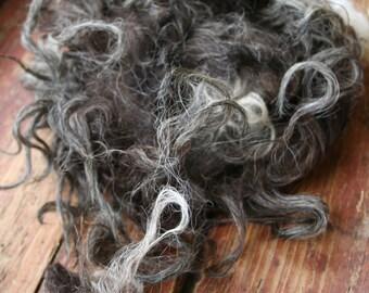 3.5 oz Klövsjö Sheep Rare Breed Raw Fleece