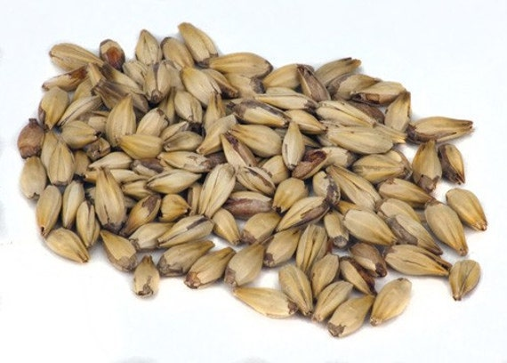 All Natural Raw Crystal 10L Specialty Malt For Home Brewing 1 Pound