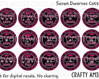Princesa Spanish Sayings 4x6 one 1 inch bottle cap image, bci, pink damask princesa de mami papi bottlecap