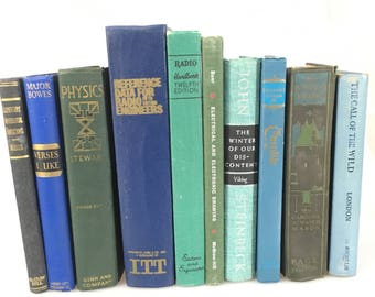 DECORATIVE Eclectic Genre Antiqued Set of Blue Books for Display