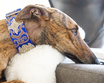 REGAL - Special occasions martingale collar, Fancy sighthound collar, Greyhound collar