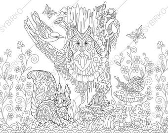 Forest Animals. Owl, Squirrel, Beetle, Snail, Jay Bird, Woodpecker. Coloring Pages. Coloring book pages for Kids and Adults. Instant Print
