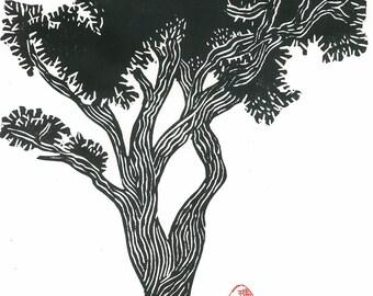 BRISTLECONE PINE - Linoleum Block Print - Black and White Pine Tree Print 9x13 - Ready to Ship