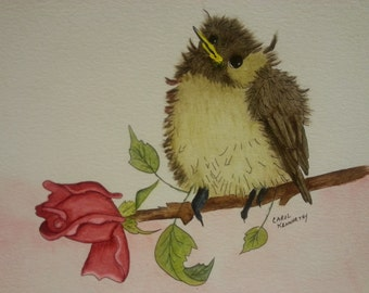BABY CHICKADEE on a ROSE branch