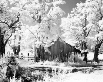 Infrared Photography, Northern California, Old Shack
