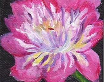 Pink Peony mini canvas art, pink on black little painting, Mini Canvas with Easel, original peony art, tiny peony painting SharonFosterArt