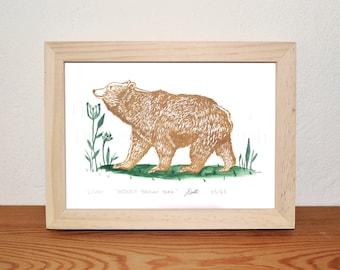 Bear Linocut, Original Print, Hand Printed, Wall Art, 10 x 8, Limited Edition, Art, Brown, Green, White, uk
