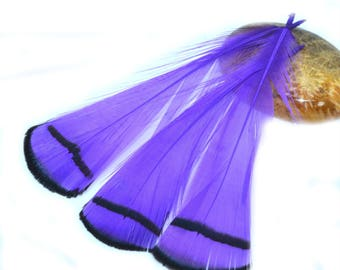 5 purple and white natural feathers 7 / 9cm