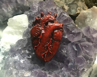 Anatomical heart pin, necklace, keychain