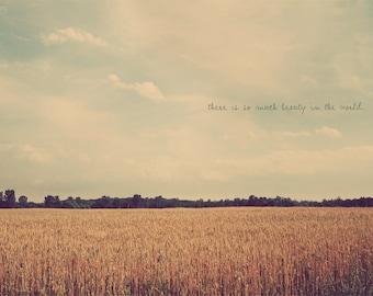 Farmland Photo, Inspirational Photo, Cottage Decor, Countryside Art, Countryside Wall Art, Corn Field Photo, Country Home Art, Golden Fields