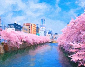 Sakura (Japanese Cherry Blossom) in Kyoto
