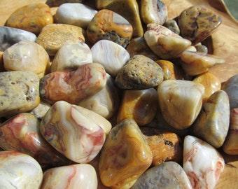 Crazy Lace Agate Medium Tumbled Stones T30