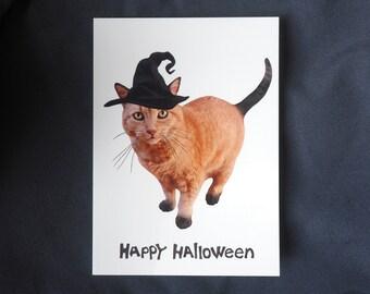 Orange Cat Witch Halloween Card, Halloween Cat Card Card
