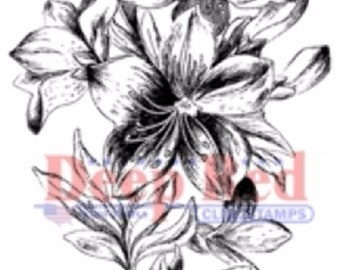 Deep Red Cling Rubber Stamp Rubber Stamp Lilly Cascade