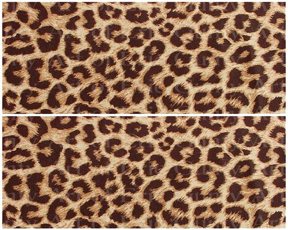 Cheetah Print Jungle Birthday - Edible Cake Side Toppers- Decorate The Sides of Your Cake! - D22932