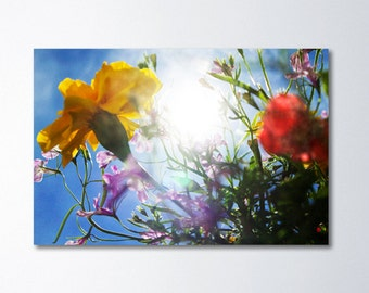 Large Wall Art, Colorful Floral Art, Nature Photography On Canvas, Oversized Art, Large Canvas Wall Art, Flowers, Sunshine, Ethereal