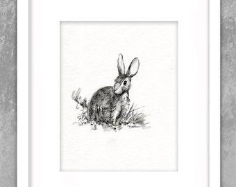 Wild Bunny Rabbit Hare - Original Painting -  Pen - Ink Black White Watercolor - Nursery - Collectable Art