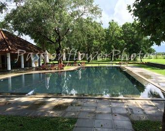 Still pool after a rainstorm.