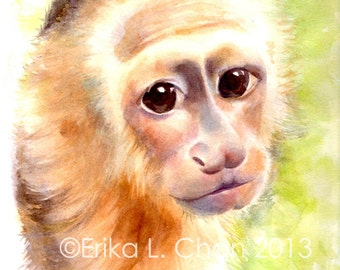 8.5x11inch Watercolor Baby White-Faced Capuchin Monkey (PRINT)