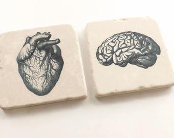 Stone Coasters, Rustic Anatomy theme medical gift, cork back, set of two, four or six, matte finish, housewarming hostess, doctor male nurse