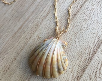 Light Yellow Sunrise Shell Pendant